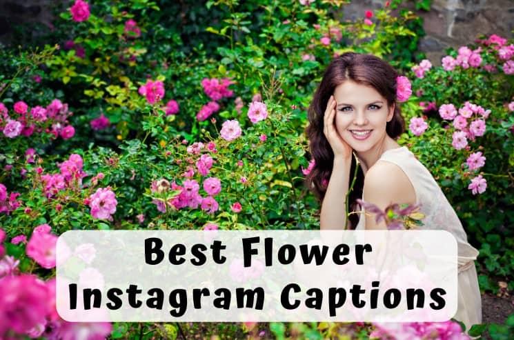 Best Instagram Captions for Flower Photos